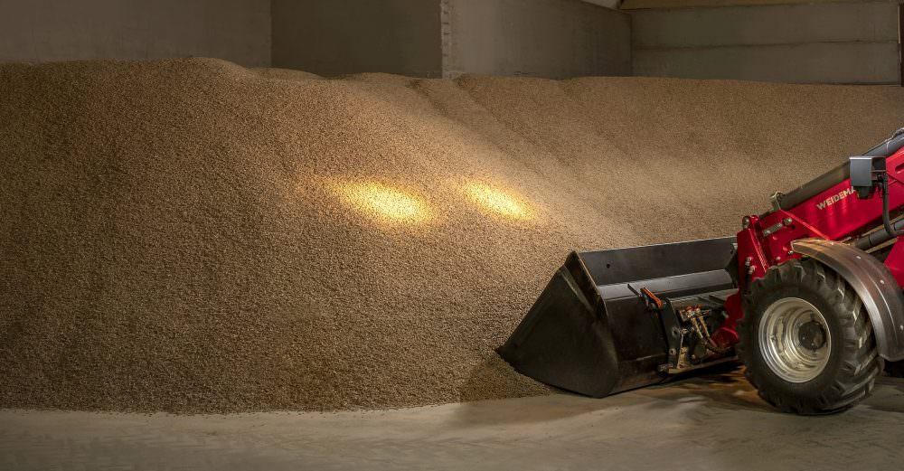 Wood Pellet & Biomass Wood Fuel Suppliers, UK   AMP Clean Energy